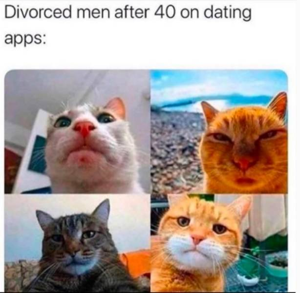 Single People Can't Live Without Memes