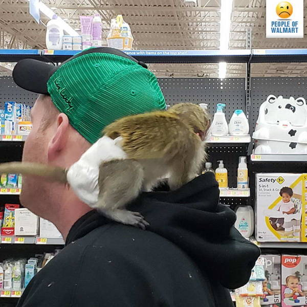 Walmart Visitors Are So WEIRD!