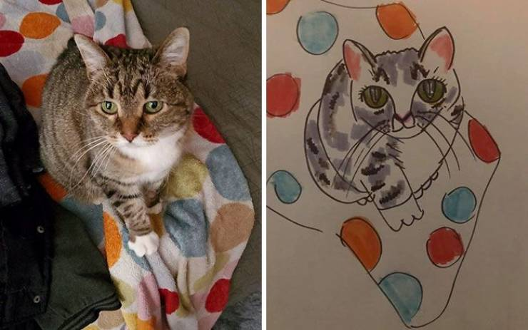 Wisconsin Humane Society Will Make A Bad Drawing Of Your Pet For A Small Donation