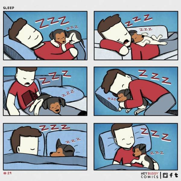 Dog Owners Will Find These Comics Extremely Relatable