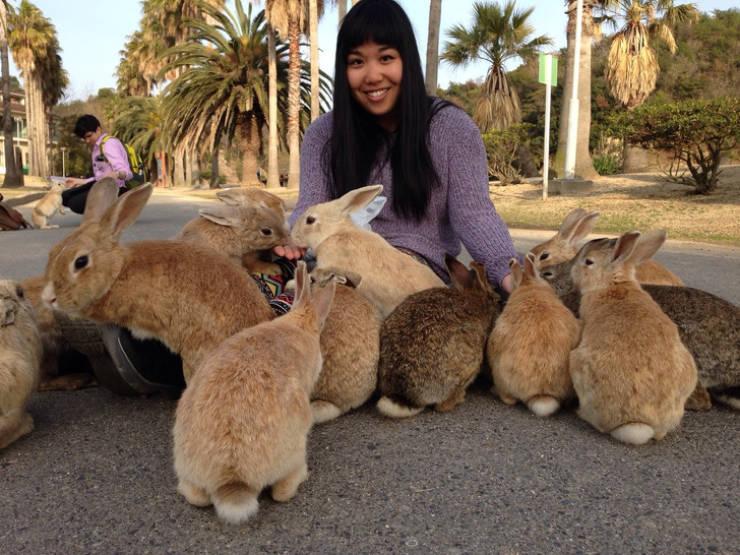 Most szeretne Japánba menni? Most akarsz Japánba menni?