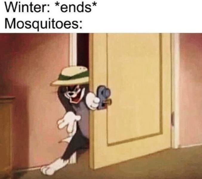 Spring Memes Are For Winter Haters Only