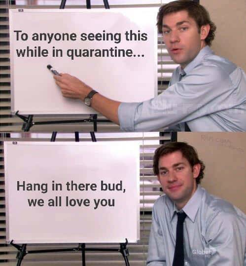 Wholesome Memes Never Hurt Nobody