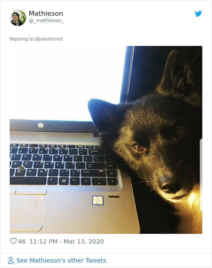 How People REALLY Work From Home