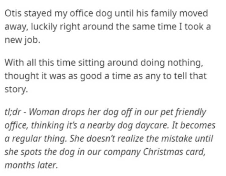 She Thought It Was Dog Daycare…