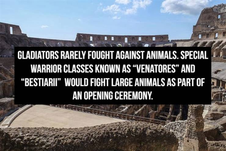 Thumbs Up For These Roman Gladiator Facts