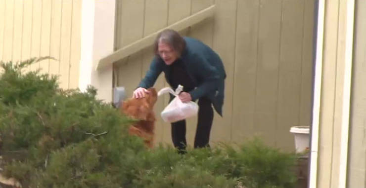 Dog Saves An Elderly Woman During Isolation