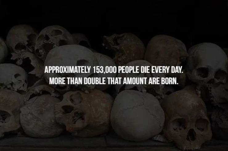 Creepy Facts Are Everywhere Right Now