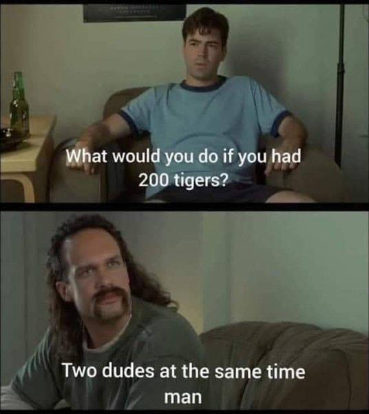 """Tiger King"" Memes Never Stop!"