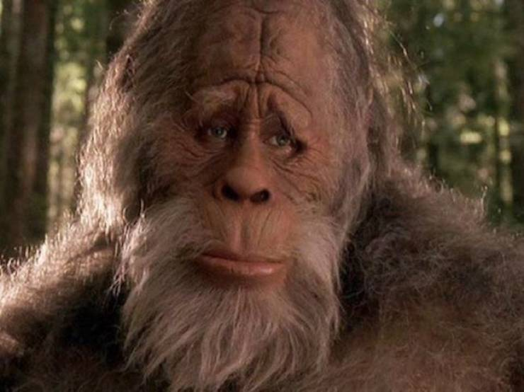 Big-Footed Facts About The Legend Of Bigfoot
