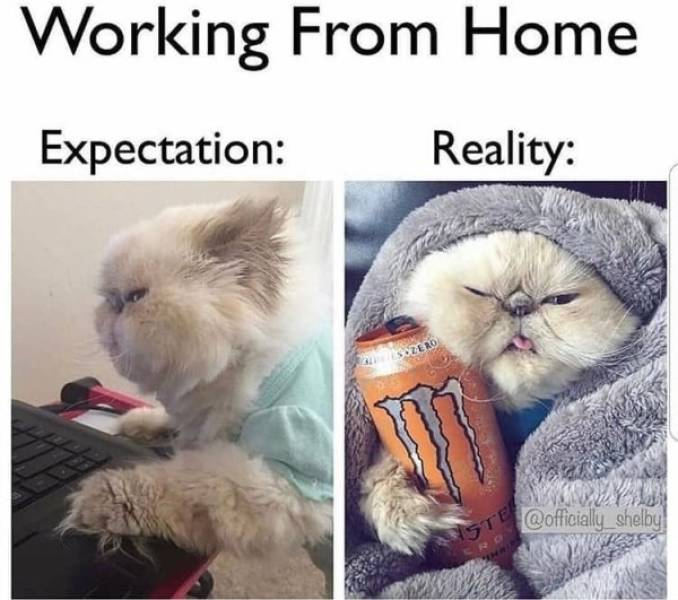 Even Home Is Work Now…