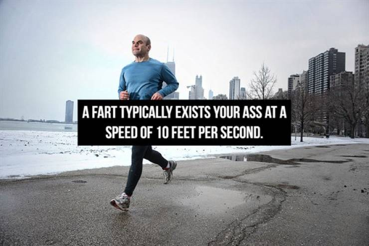 Fart Facts, Because Why Not...