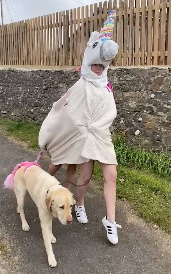 Her Dog Is Now Embarrassed To Go For A Walk With Her