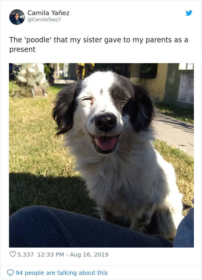 It Was Not The Breed They Expected!