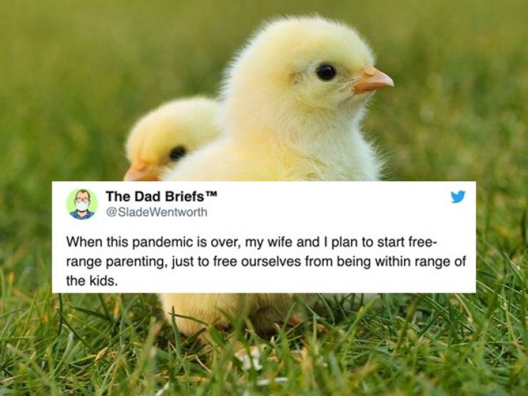 Parenting Tweets Are Kinda Grim After A Month At Home
