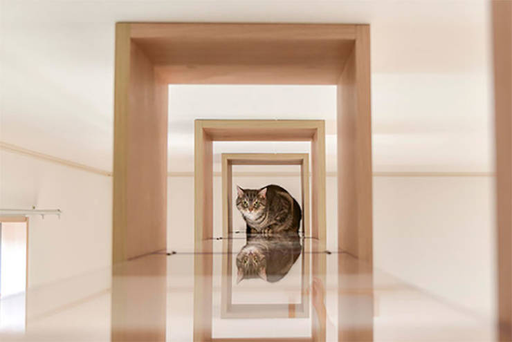 These Japanese Apartments Are For You And Your Cat Only!
