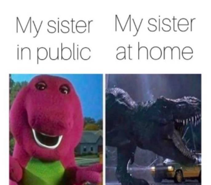 These Sibling Memes Are SO Annoying!