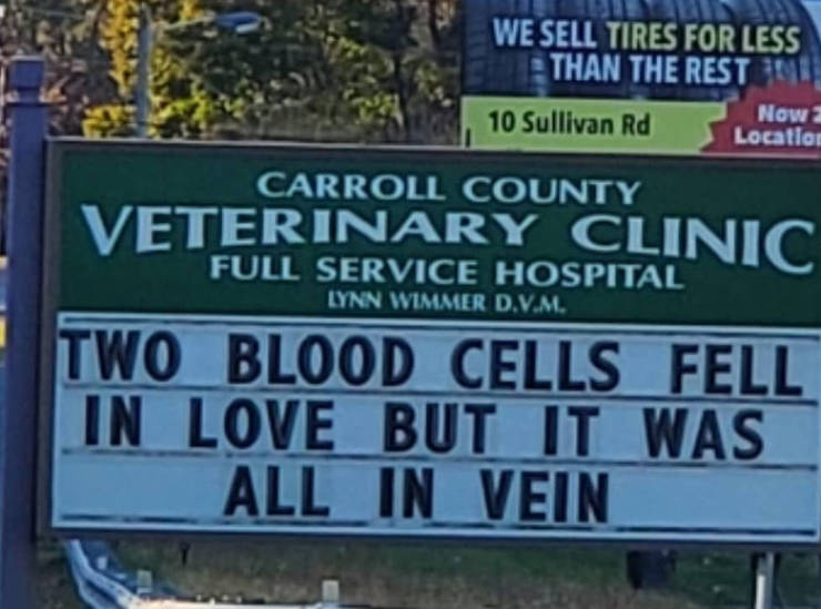 Vet Clinic Hits You With Best Dad Jokes