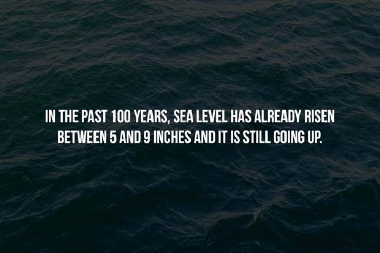 Do You Feel The Chill Of These Creepy Facts?