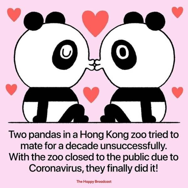 The Bright Side Of Coronavirus Quarantine