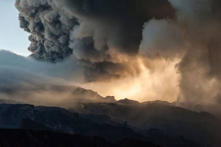 """Check Out The Winners Of """"GDP Nature Photographer Of The Year 2020"""""""