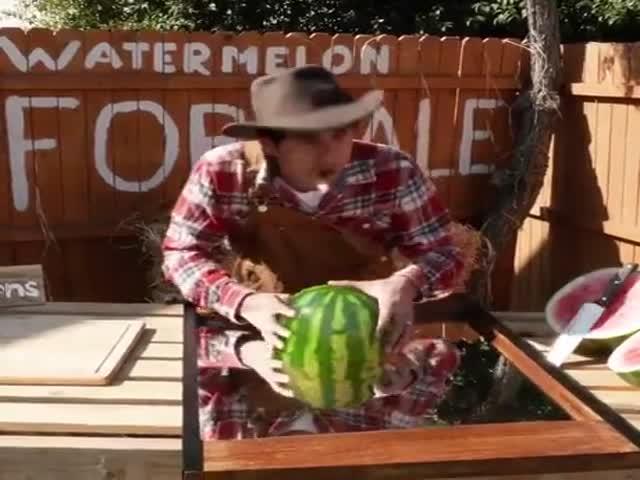 Watermelon Factory