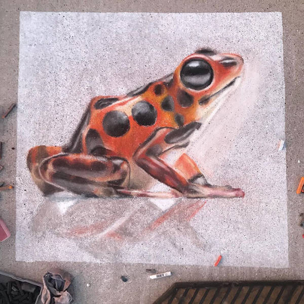 Mother And Daughter Create 3D Chalk Art That Will Trick Your Eyes!