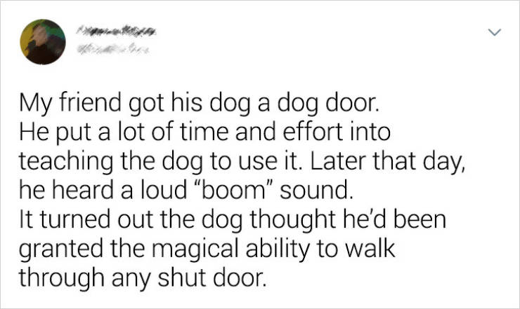 Not Everyone Can Be A Good Boy…