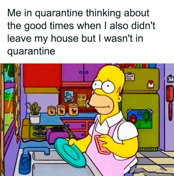 Quarantine Might Be Weakening, But The Memes Are Not