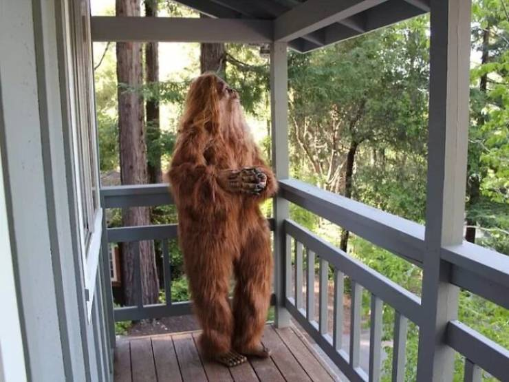 Bigfoot Approves This House Listing!