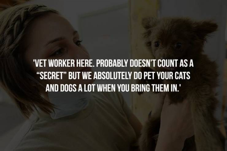 Work Secrets Only Insiders Know About