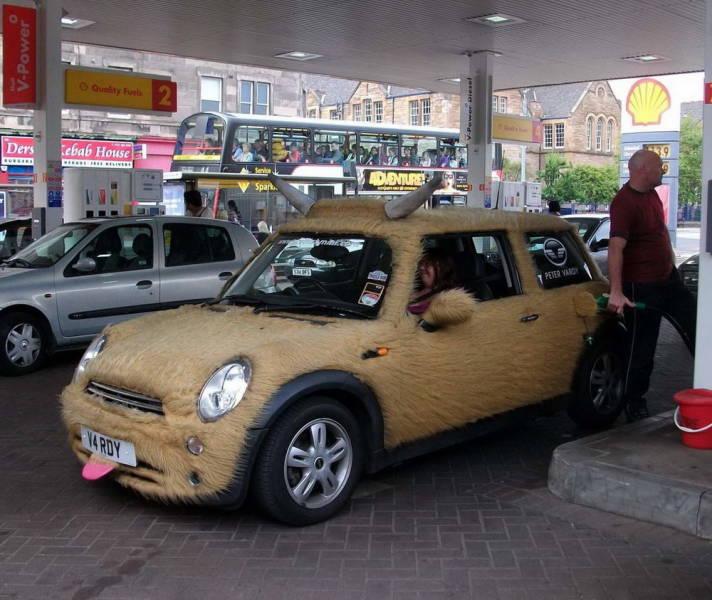 Gotta Love This Car Humor!