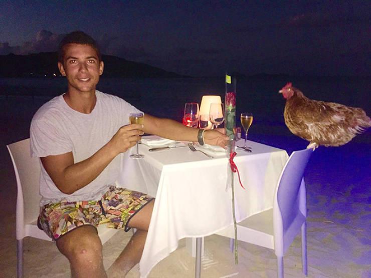 Around The World With A Pet Chicken
