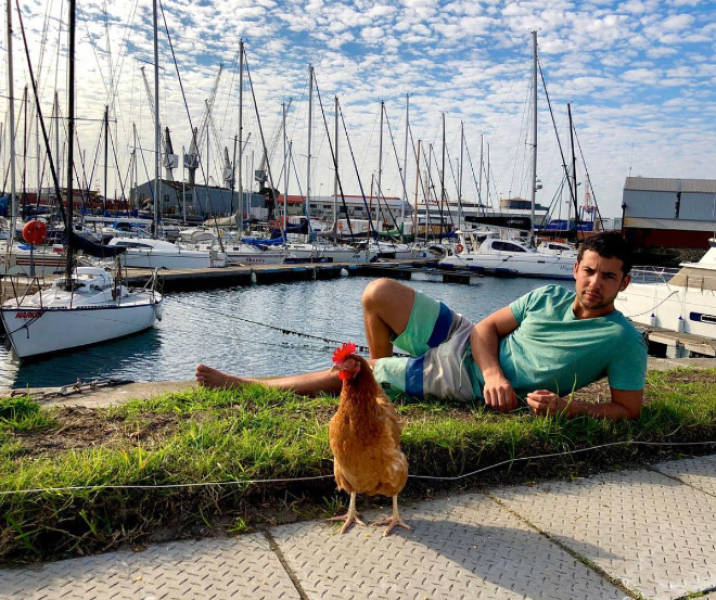 Around The World With A Pet Chicken