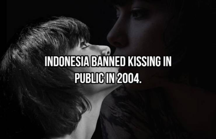 What You Should Know About Kissing