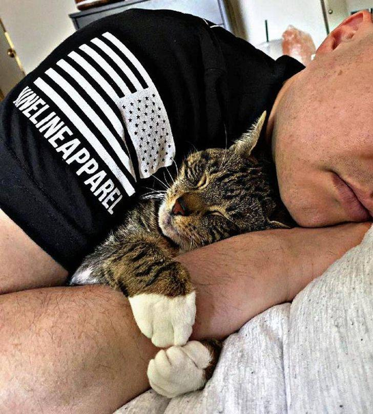 Pets And Their Owners Who Are In Love With Each Other