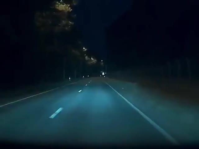 Saved By Tesla Autopilot