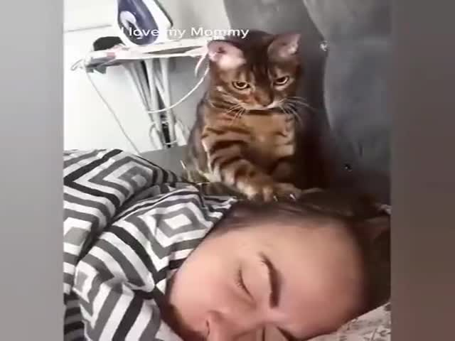 Get Up, Woman!