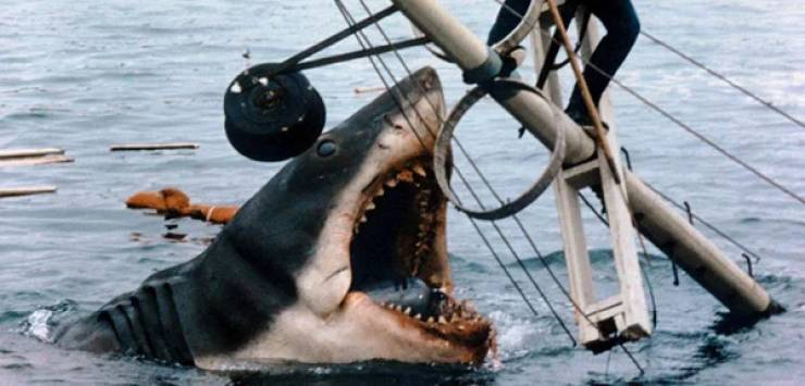 """These """"Jaws"""" Facts Could Devour You!"""