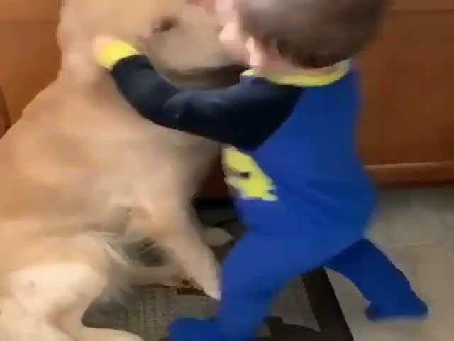 Hug Me, Bro!