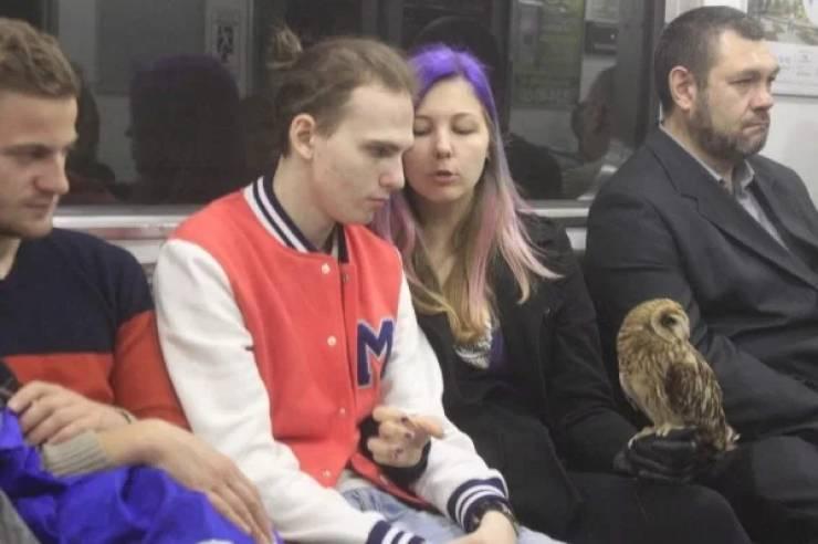 Looks Like Normal People Don't Travel Via Subway…