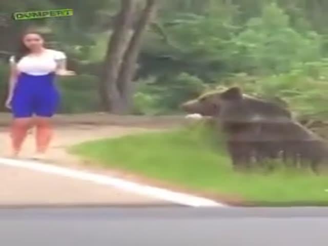 Look, It's A Teddy Bear!