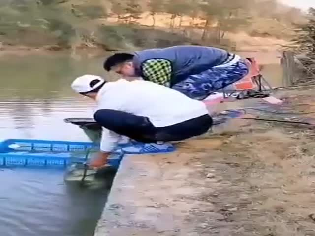 What A Catch!