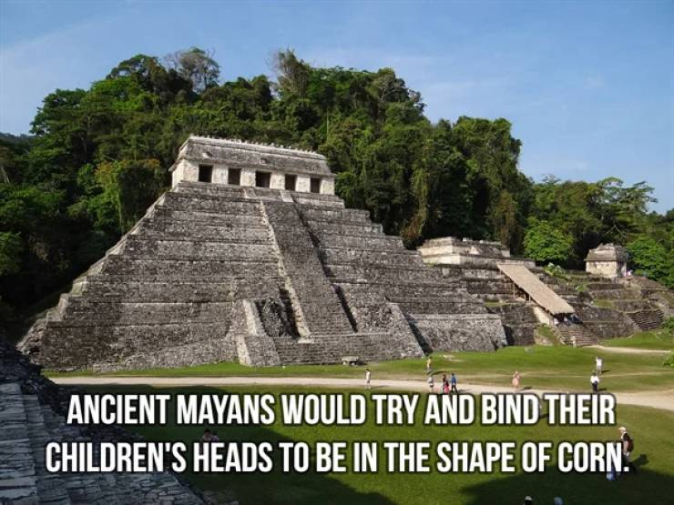 Ancient History Is So Fascinating!