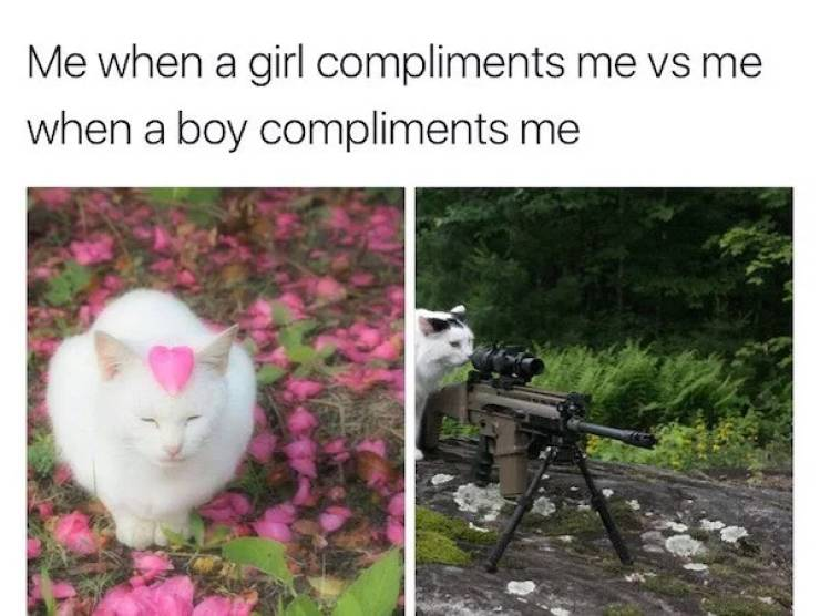 Girls, Here Are Your Memes!