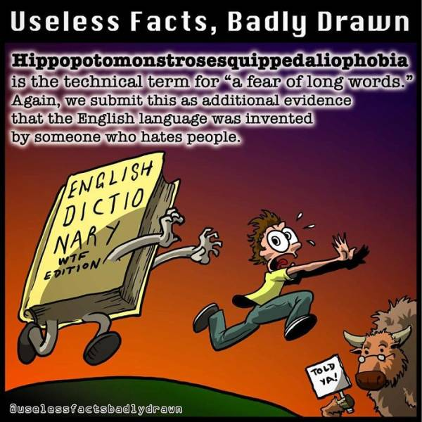 Absolutely Useless Facts Together With Bad Drawings