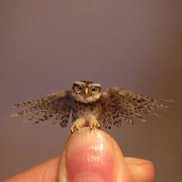 These Miniature Animals Are Handmade!