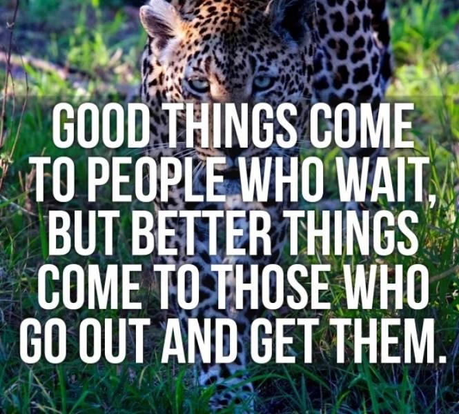 Enjoy This Wisdom