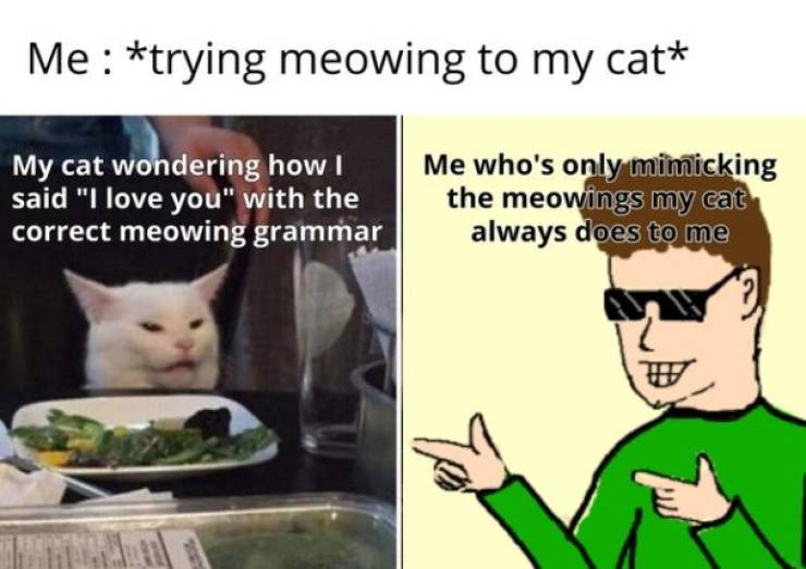 Feel The Wholesomeness Of These Memes!