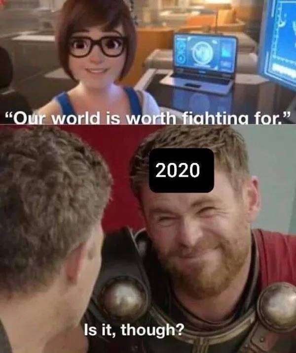 At Least 2020 Gave Us A Lot Of Memes…